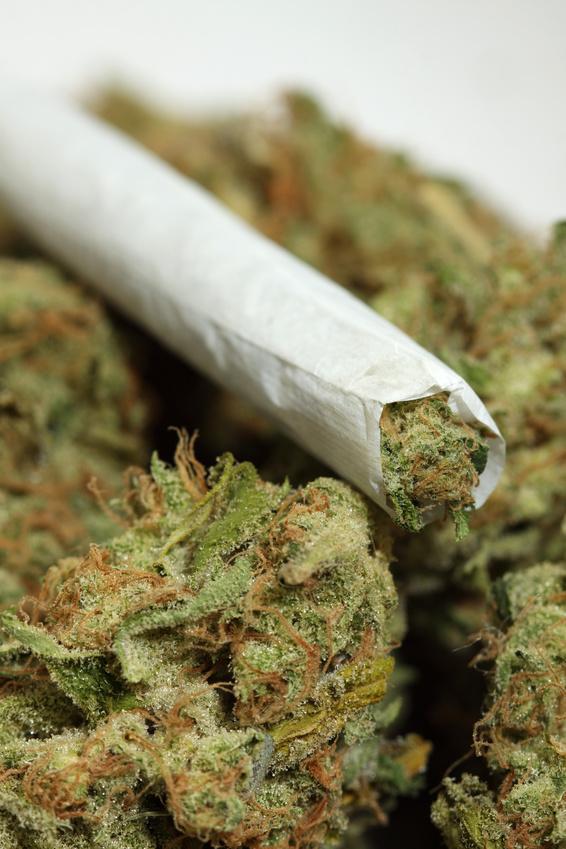Конопля папиросе фото в марихуану почему запрещает